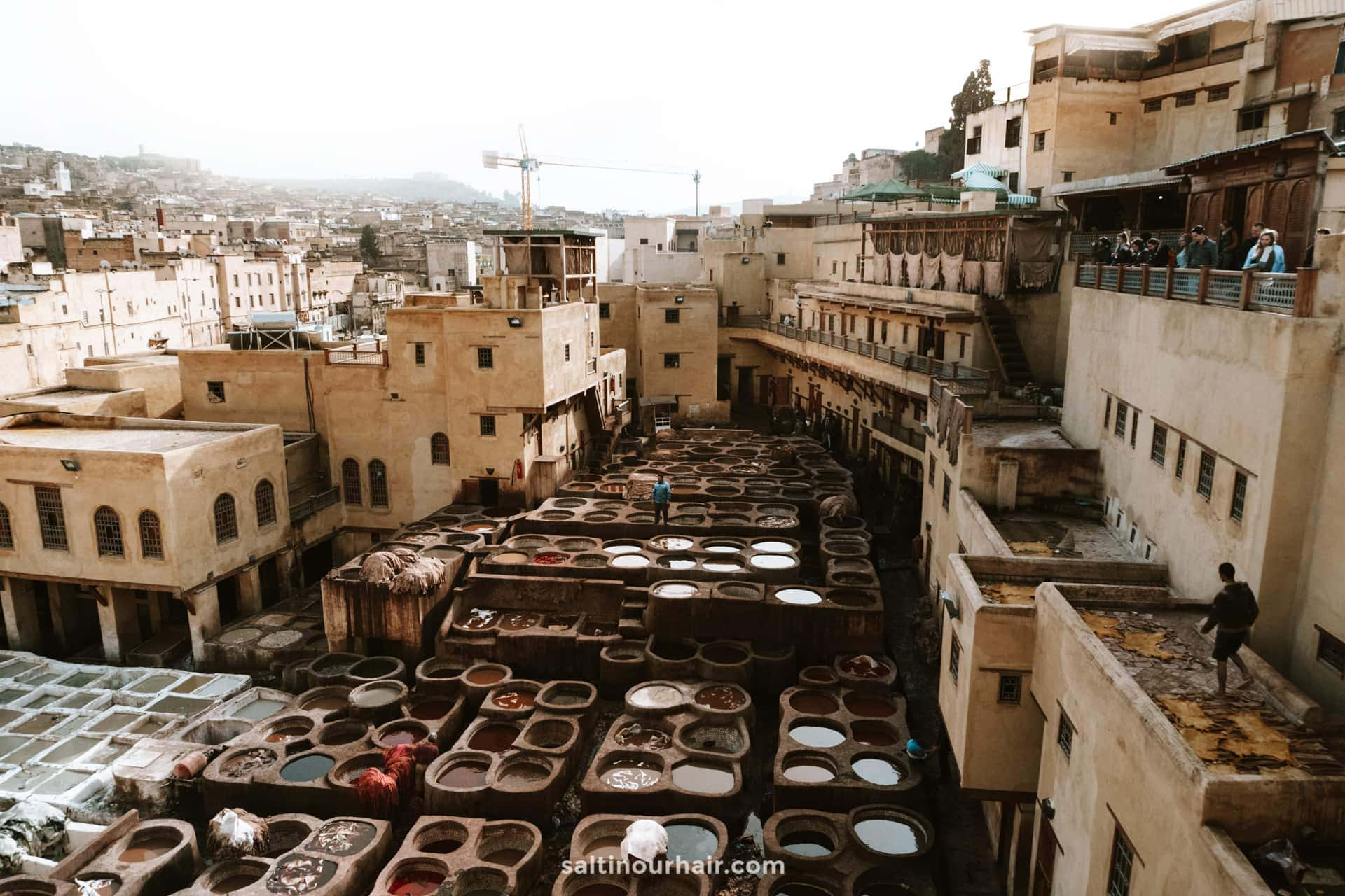things to do fes morocco tanneries