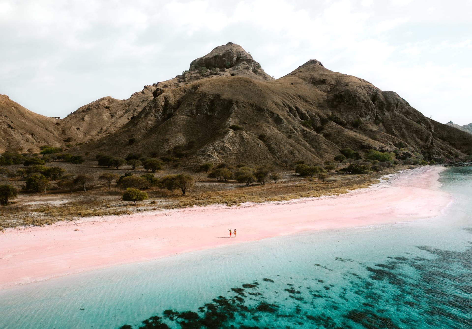 long beach pink komodo islands