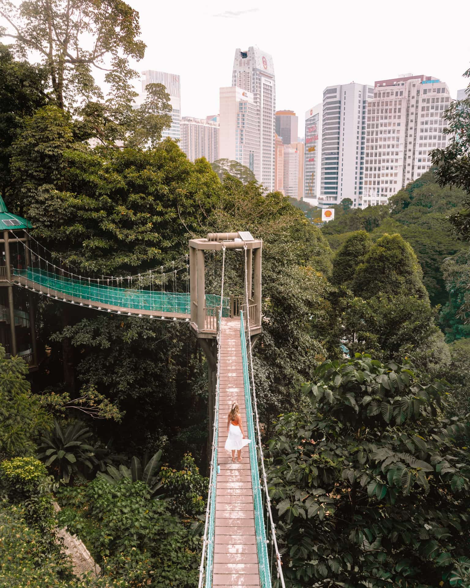 things to do kuala lumpur eco forest