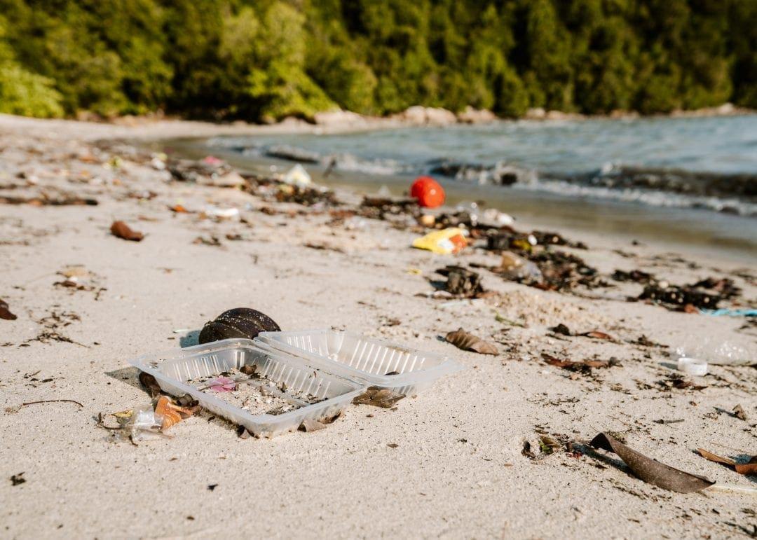 ocean plastic free